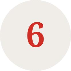 ico 6